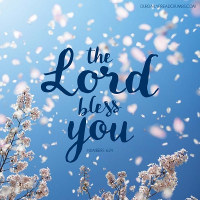 The LORD bless you. Numbers 6-24 Bible Verses